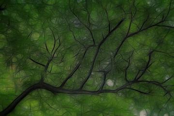 Tree branch graphics