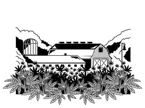 Cannabis natural farm print