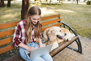 Wall Mural - beautiful girl in casual clothes sitting on wooden bench in park and using laptop while golden retriever lying near woman