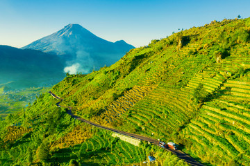 Road with green farmland in Dieng plateau