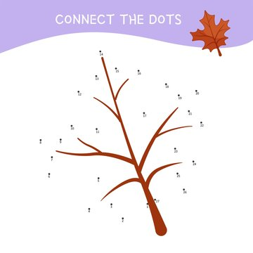 Educational game for kids. Dot to dot game for children. Forest collection.