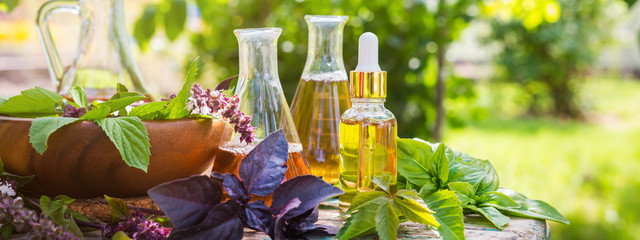 Oil for skin care, massage from natural ingredients, herbs, mint in glass jars and test tubes on a green background in the garden on the nature, natural cosmetics Fototapete