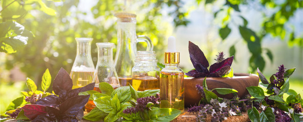 Oil for skin care, massage from natural ingredients, herbs, mint in glass jars and test tubes on a green background in the garden on the nature, natural cosmetics Wall mural