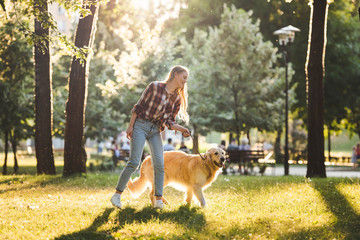 Wall Mural - full length view of beautiful girl in casual clothes walking with golden retriever on meadow in sunlight