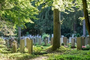 Friedhof - Grabsteine im Gegenlicht