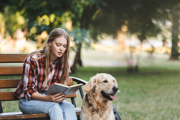 Wall Mural - beautiful girl in casual clothes sitting on wooden bench in park and reading book near golden retriever