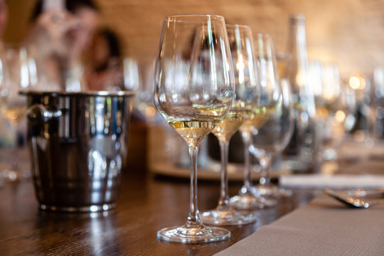 Closeup row of glasses with white wine stand on table, metal bucket for spitting. Concept professional vertical tasting great top white wines, sommelier training, school. Degustation in chateau