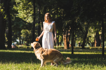 Wall Mural - full length view of beautiful young girl in white dress playing with golden retriever on meadow