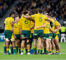 2019 Bledisloe Cup rugby Australia v New Zealand Aug 10th