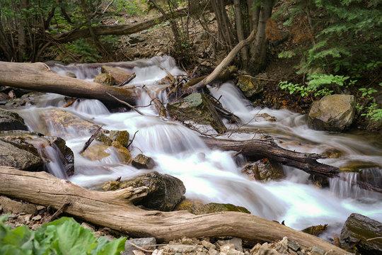 Stream in the mountains near Layton, Utah