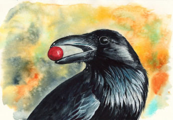 Watercolor picture of a black raven with red berry in its beak