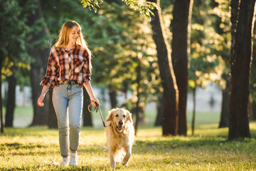 Wall Mural - full length view of girl in casual clothes walking with golden retriever on meadow in sunlight