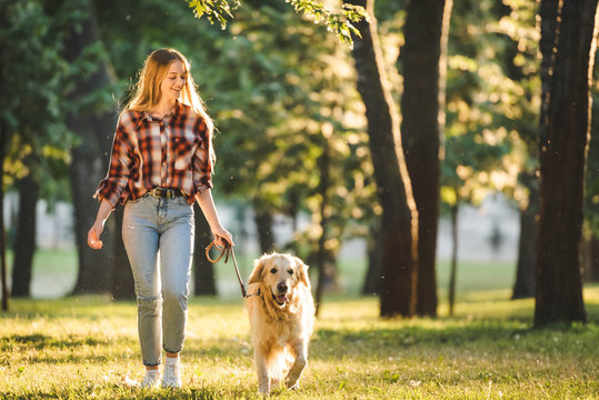 full length view of girl in casual clothes walking with golden retriever on meadow in sunlight