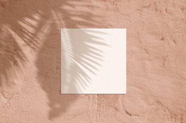 Summer modern sunlight stationery mockup scene. Flat lay top view blank greeting card with palm leaf and branches shadow overlay on grunge coral background.