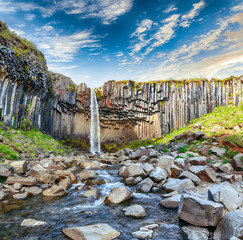 Amazing view of Svartifoss waterfall with basalt columns on South Iceland.