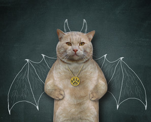 The cat  with a medallion is standing near the blackboard on which are painted the wings of a bat and horns. He wants to be scary.