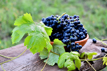 Black grapes in a ceramic plate on an old board in the garden. Fototapete