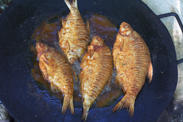 Frying carp fish in a frying pan on an open fire. Cooking fish for picnik lunch. Top view.