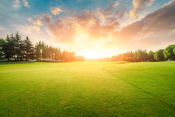 Photo sur Aluminium Herbe Green grass and forest with beautiful clouds at sunset