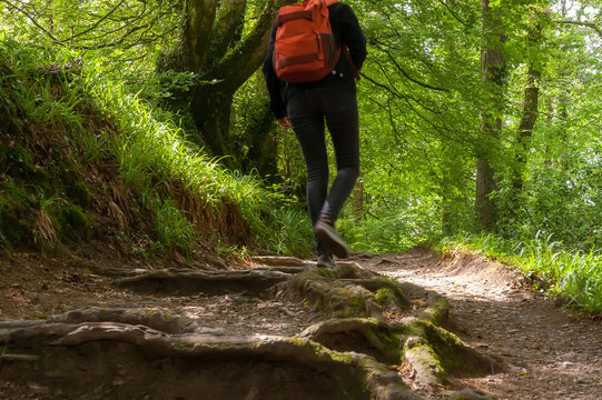 Hiker in the Lydford Gorge Natural Reserve, Devon, UK