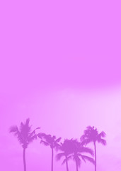 Fond de hotte en verre imprimé Rose banbon Palm tree silhouette purple pastel sky with copy space summer concept