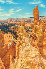 Foto op Canvas Turkije Bryce Canyon National Park, Utah, USA