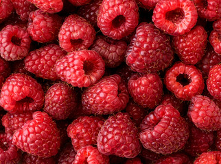 Ripe raspberries background. The view of the top. Fototapete
