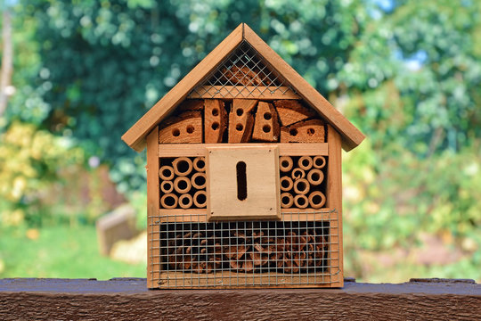 Small wooded insect house hotel used in gardens, a structure created to provide shelter for insects like bees to prevent extinction