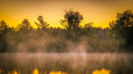 Foto op Canvas Meloen Panorama of tendrils of morning mist on a lake at sunrise and a colorful orange glow in the sky reflected in the tranquil water with the surrounding woodland trees in an atmospheric landscape