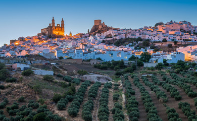 Panoramic sight at sunset in the beautiful Olvera, province of Cadiz, Andalusia, Spain.