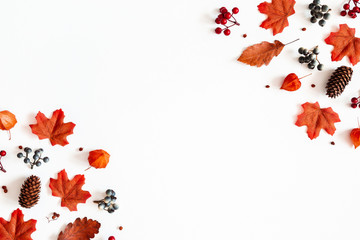 Autumn composition. Frame made of flowers, maple leaves, berries on white background. Autumn, fall,...