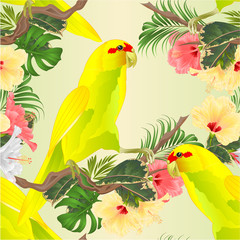 Printed roller blinds Parrot Seamless texture Bird Indian Ringneck Parrot in Yellow on branch with tropical flowers hibiscus, palm,philodendron watercolor vintage vector illustration editable Hand draw
