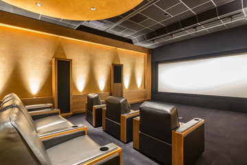 Stunning stylish home cinema. Home theatre. Private Screening Room