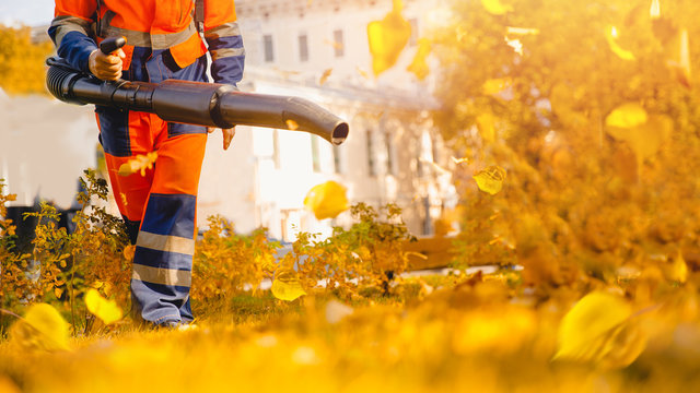 Male worker removes leaf blower leaves lawn of garden Autumn