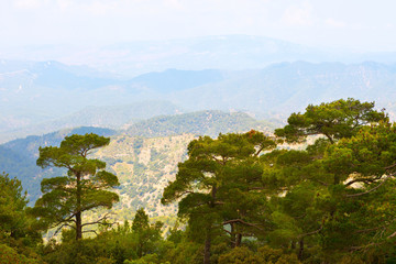 Troodos mountains located in the Western part of the island of Cyprus.