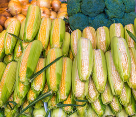 Yellow and White Corn in a Vegetable Market