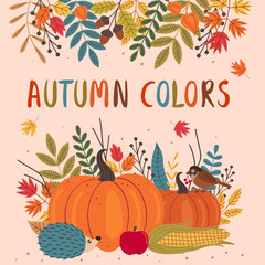 card design with autumn colorful elements  - vector illustration, eps