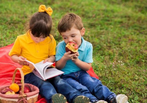 Cute children - a girl in yellow and a boy in blue t-shirts with interest reading a book, eating apples, sitting on a red blanket. Picnic in nature. The view from the top. Horizontal photography