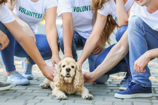Volunteers with cute dog outdoors