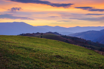 beautiful mountain landscape in autumn. grassy meadow on rolling hills at dusk. borzhava ridge in the distance. amazing weather with dark clouds on the glowing golden sky