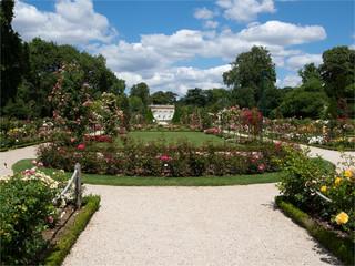 vu du jardin de Bagatelle et de ses rosiers à Paris