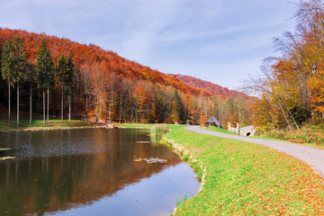 beautiful park in the mountains. wonderful sunny autumn weather. walking path around the pond. trees in fall foliage.  blue sky with clouds
