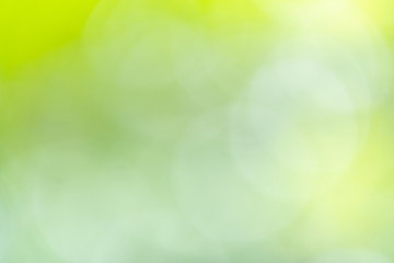 Abstract greenery blurred background with beauty bokeh under sunlight in summer.