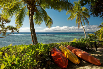 Foto auf Leinwand Insel Tropical island holiday, a beach with palm trees on the south pacific island of Tonga.
