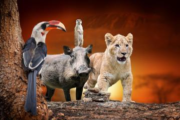 African animals on savanna landscape background and Mount Kilimanjaro at sunset