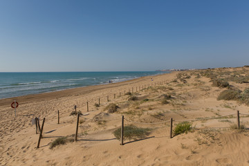 Beautiful natural sandy beach and sand dunes near Guardamar de Segura Costa Blanca Spain with view to Torre la Mata