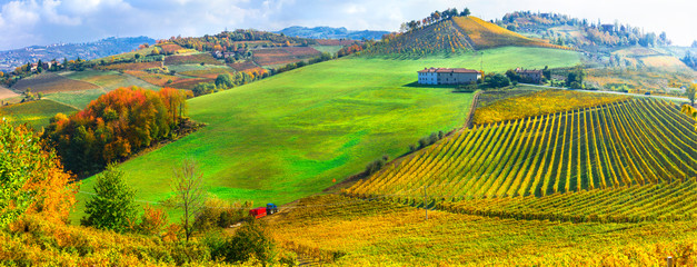 Autumn scenery, Vineyards in contryside of Piedmont, Northen wine region of Italy Fototapete