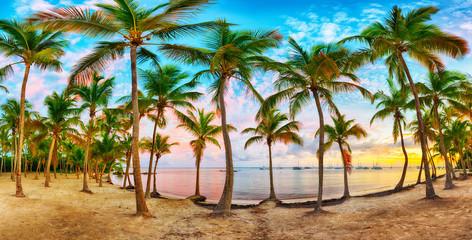 Anse Chamapgne beach of Guadeloupe