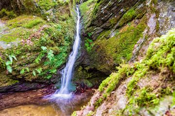 Ehrbachschlucht, wo einst die Waldnymphen badeten