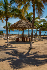 Vegetation and Palapas in the Beautiful caribbean island of Belize